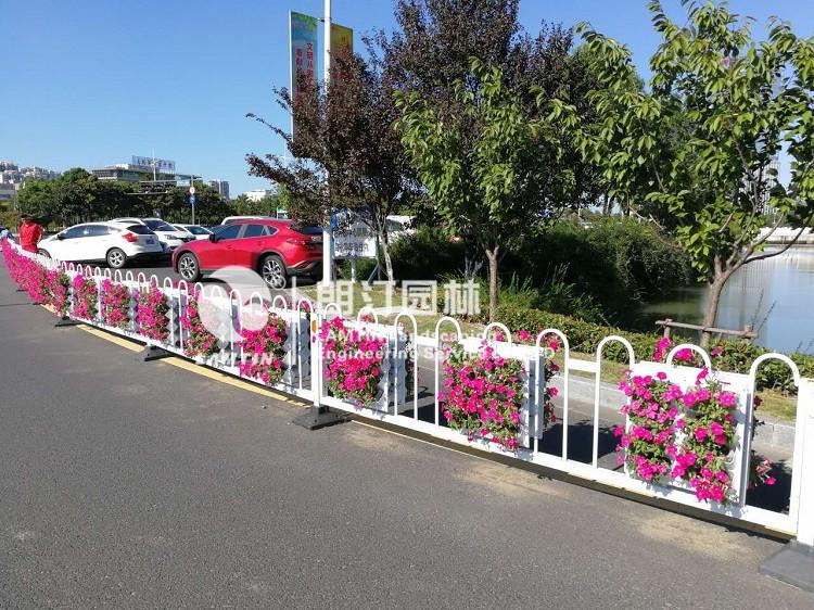 朗汀护栏绿化案例