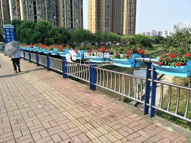 朗汀必威官网亚洲体育护栏绿化案例
