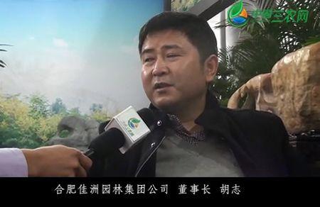 佳洲必威官网亚洲体育胡志- by:nzcms