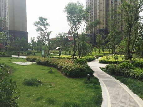 舜泉必威官网亚洲体育-- (生态新城)绿茵里景观绿化工程
